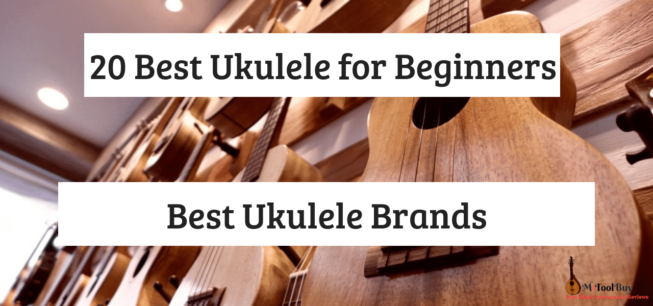 Best Ukuleles For Beginners