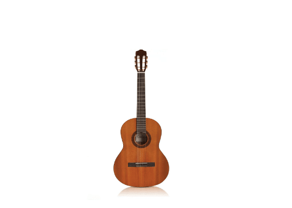 Cordoba Dolce Acoustic Nylon String Classical Guitar